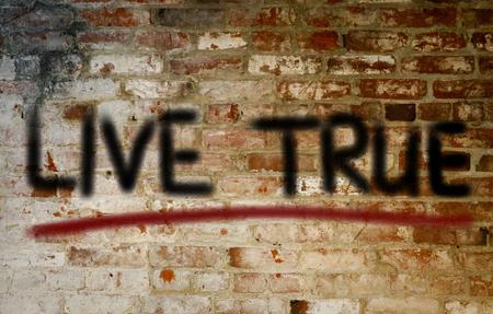 true: Live True Concept