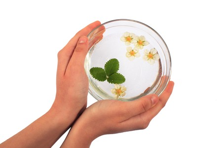 hands of a girl holding a bowl of floating flowers Stock Photo