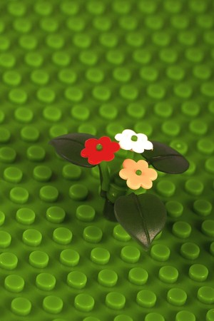ornamental flowers and grass by the childs play