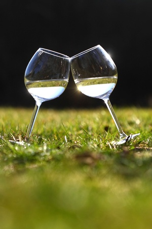 two glasses of white wine on the grass Stock Photo