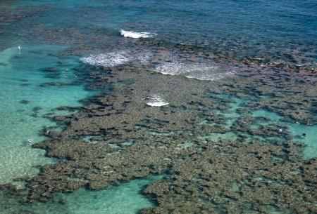 Reef formations in Hanauma Bay, Hawaii Reklamní fotografie