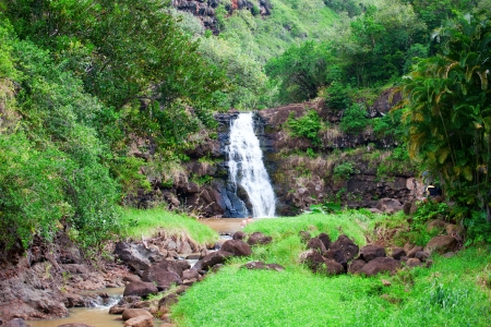 Waimea Falls, Oahu, Hawaii photo