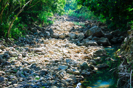 Dry riverbed, Waimea River, Waimea Valley, Oahu, Hawaii