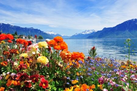 古典的なスイスの風景