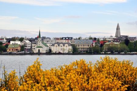 reykjavik: Reykjavik city, Iceland