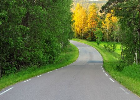 Winding asphalt road in the forest with green and yellow trees, Norway