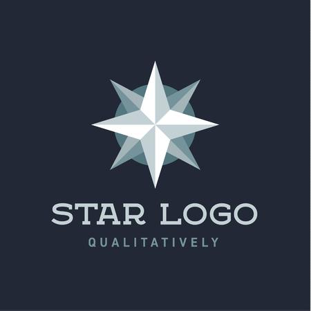 polar lights: Star Polaris sharp white flat style lights twinkle quality mark logo icons modern