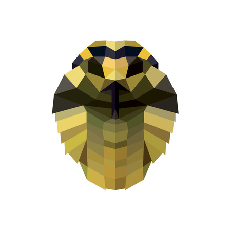 snake head: Snake head illustration low poly style for design modern quality art Stock Photo