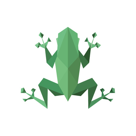 Frog illustration polygon, low poly faces, sharp angles vector on white background.