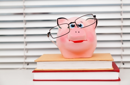 piggy bank  on books - student debt concept photo