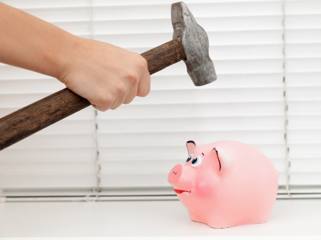 hand  about to break his piggy bank with hammer  photo