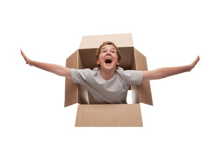 airborne vehicle:  boy in a cardboard box dreams that it flies in an airplane on the sky