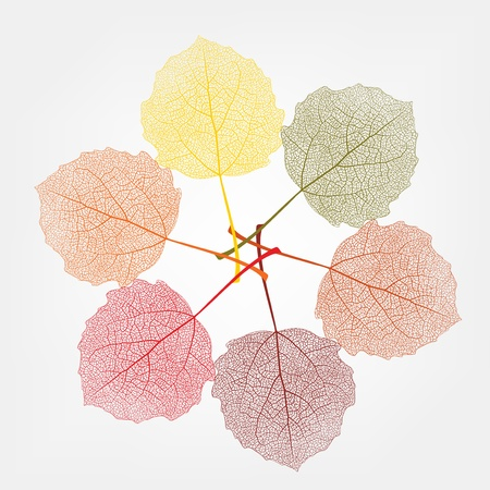 autumn colour: Autumn background from colour Leaf Stock Photo