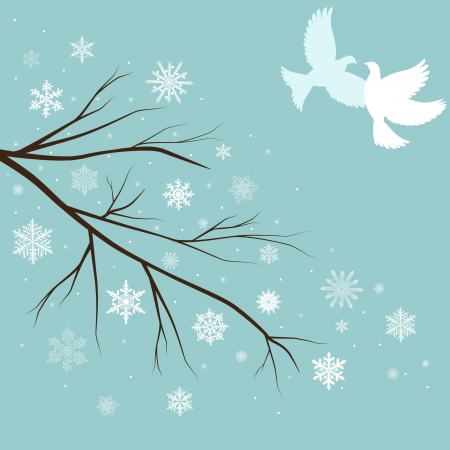 snow branches with birds  photo