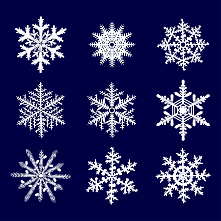 collection white snowflake on a blue  background photo