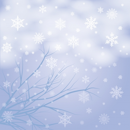 vector snow branches with snowflakes  photo