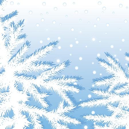 Christmas tree branch fir on a snow sky