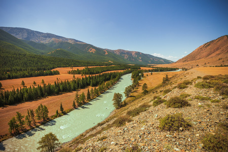 Katun River summer afternoon, Altai Mountains photo