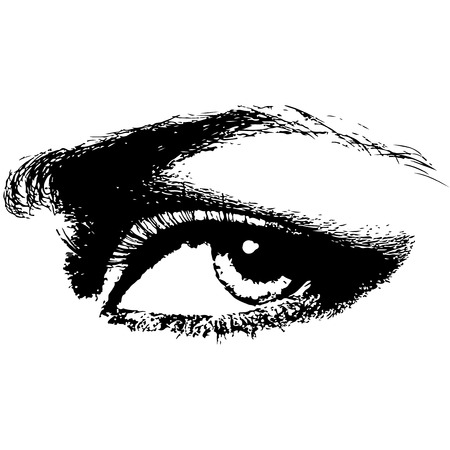 human eye beauty woman vector illustration Stock Photo