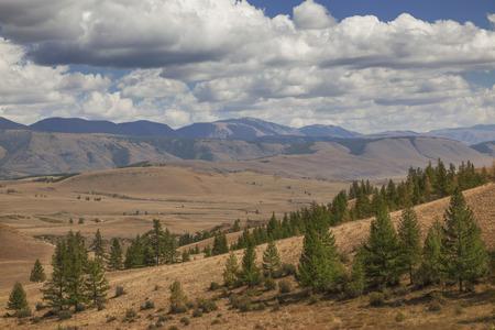 Letní krajina z pohoří Altaj Reklamní fotografie