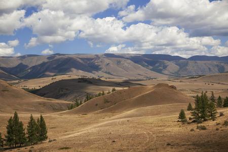non urban: Summer landscape of the Altai Mountains
