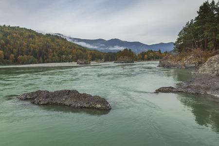 katun: Autumn on the river Katun, Altai
