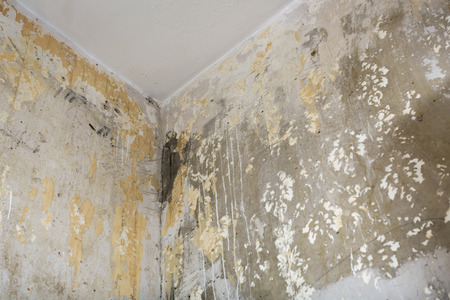 old wallpaper: corner of the room, concrete walls with remnants of old wallpaper