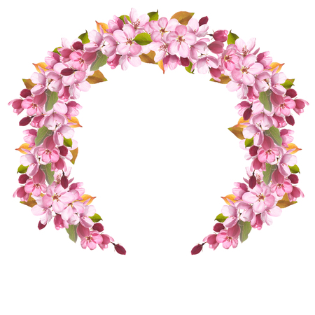 A wreath of pink apple tree flowers isolated on white background