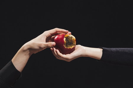 Rotten apple of knowledge, a young girl gives it to a man, hands on a black background Stock Photo