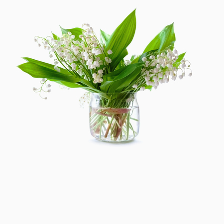 Bouquet of lily of the valley in a glass jar on a white background