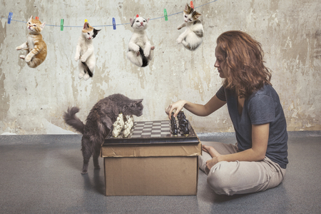 Young girl plays chess with a cat in an old empty room, the kittens dry on a clothesline Stok Fotoğraf
