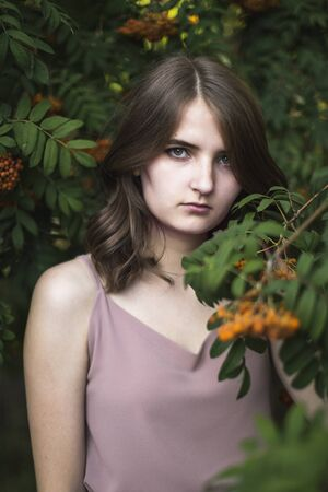 Portrait of a beautiful girl among the branches of a mountain ash Banque d'images