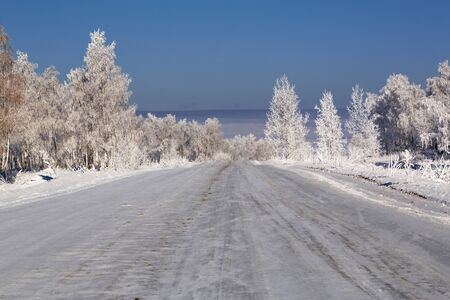 Snowy road among birch groves in winter day Banque d'images - 147238330