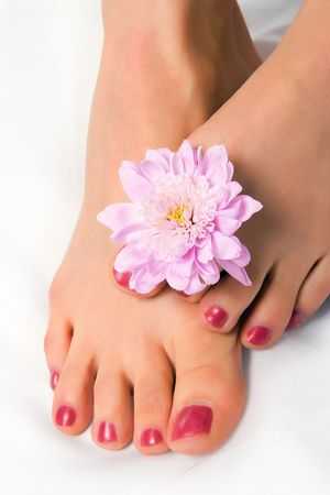 bodyscape: woman foot with flower chrysanthemum on white Stock Photo