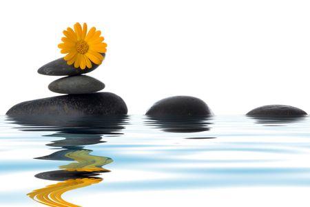 Spa pierres avec fleur jaune sur fond blanc dans l'eau
