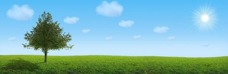 Landscape  tree on the field under blue sky and white clouds Stock Photo - 2174984