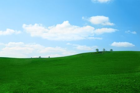 agruculture: green grass field with blue sky and clouds Stock Photo