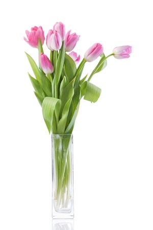 tulpen bloemen op witte achtergrond