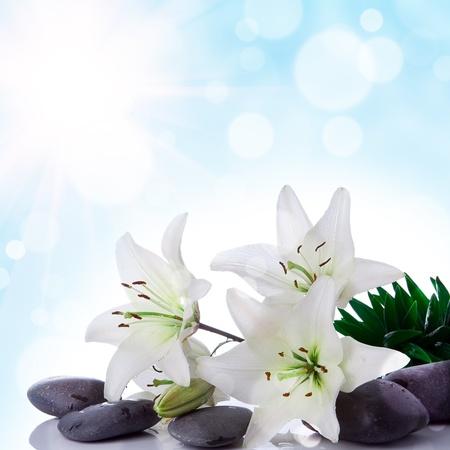 abstract floral achtergrond met bloem