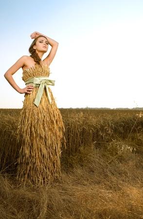 woman in wheat field under blue sky photo