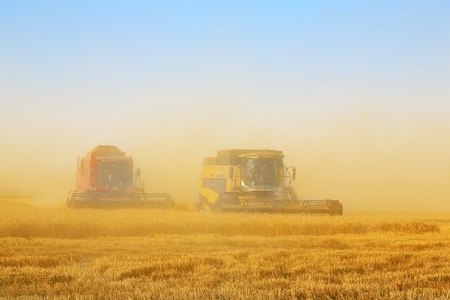 combine harvester in field wheat Stock Photo
