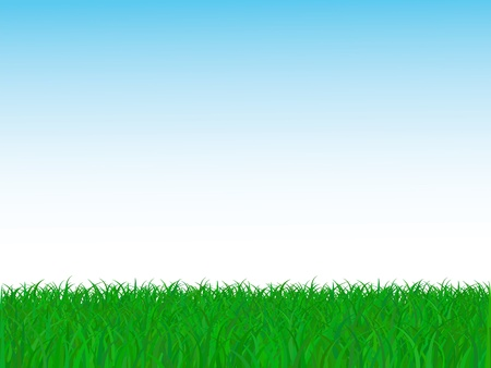 grass blade: vector grass and sky  Illustration