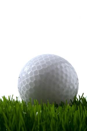 Golf ball on green grass over white photo