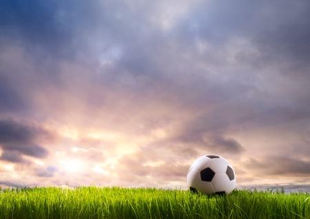 pelota de futbol: Bal�n de f�tbol sobre la hierba verde Foto de archivo