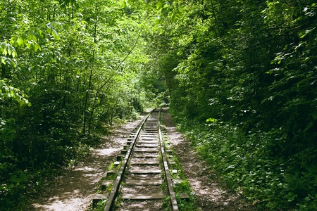 mountain railway with narrow gauge Stock Photo - 13595400