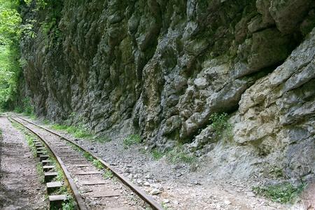 narrow gauge: mountain railway with narrow gauge