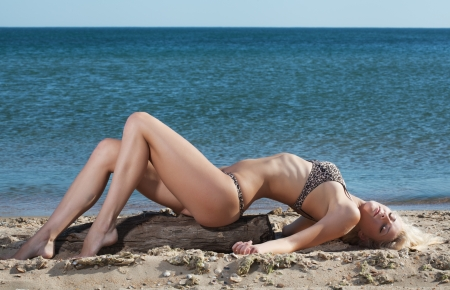 beauty sexy woman on beach in bikini photo