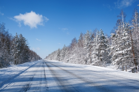 country roads: winter road in snow fores