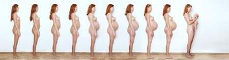 Collage mujer embarazada principio a fin, de nueve meses, nueve estados de embarazo y el bebé recién nacido Foto de archivo - 29277160