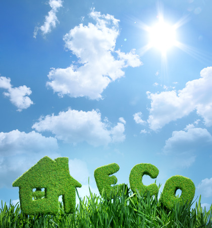 eco building: house from grass and word eco on blue sky